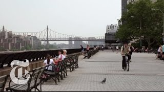 Download A Look at Yorkville, Manhattan | Real Estate, Block by Block | The New York Times Video