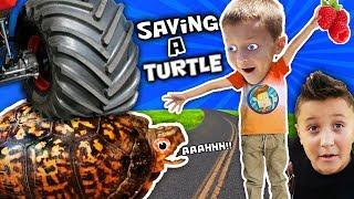 Download WE SAVED AN INJURED TURTLE!! FUNnel Vision Pet Smart Habitat Vlog Video
