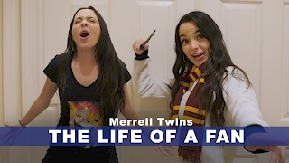 Download THE LIFE OF A FAN - Merrell Twins Video