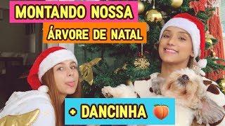 Download Montando nossa árvore de natal com dancinhas Video
