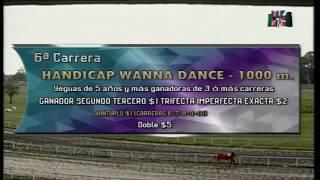 Download Carr.6 HANDICAP WANNA DANCE 21-05-2019 Video