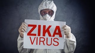 Download The Truth Behind the Zika Virus Video