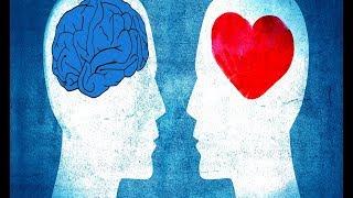 Download L'intelligence émotionnelle - Daniel Goleman Video