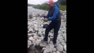 Download FENOMENAL PESCA. En rios de CHILE. Video