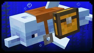 Download ✔ Minecraft: 10 Things You Didn't Know About Dolphins Video