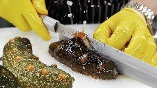 Download Korean Street Food - SEA CUCUMBER Seafood Korea Video