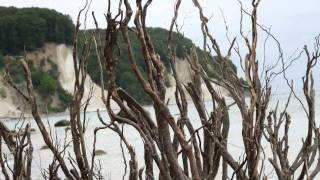 Download Rügen 2011 - Wanderung am Kreidefelsen Video