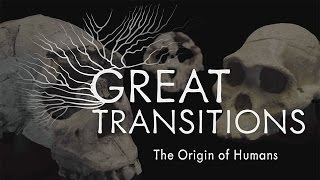 Download Great Transitions: The Origin of Humans — HHMI BioInteractive Video Video