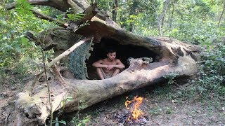 Download Primitive Technology: House in the trunk Video