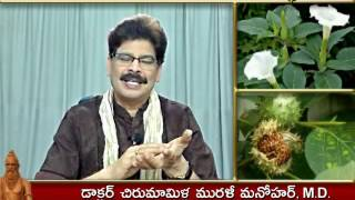 Download Ummetta (Datura) - Traditional Ayurvedic Remedies in Telugu by Dr. Murali Manohar Chirumamilla, M.D. Video