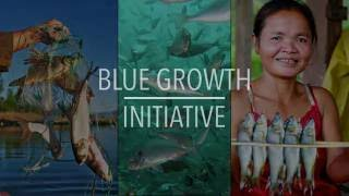 Download FAO Policy Series: Blue Growth Initiative Video