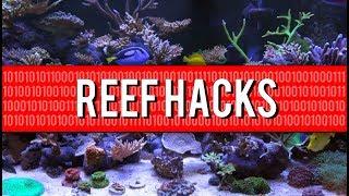 Download Top 10 Household Reef Aquarium Hacks Video