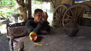 Download SI BATMAN YANG PUNYA TANGAN SELIMUT | SI OTAN (21/02/19) PART 2 Video