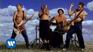 Download Red Hot Chili Peppers - Californication Video