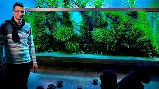 Download THE WORLD'S MOST FAMOUS PLANTED TANK - TAKASHI AMANO'S HOME AQUARIUM - JAPAN VLOG PART 2 Video