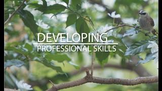 Download Developing Professional Skills Video