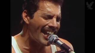 Download Queen Live at Milton Keynes, June of 1982 Video