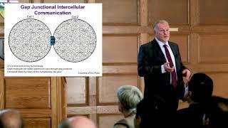 Download Cellular Small Talk: Dale Laird | Distinguished University Professor 2018 Video
