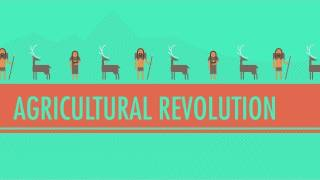 Download The Agricultural Revolution: Crash Course World History #1 Video