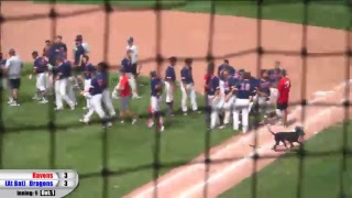Download Blue Dragon Baseball vs. Coffeyville (Region VI Game 3) Video