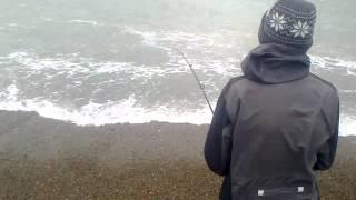 Download pecando tiburón (vitaminico) en las costas de comodoro rivadavia Video