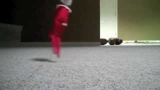Download ELF ON THE SHELF MOVING!!! Video