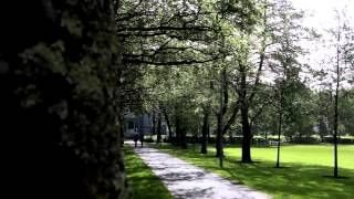 Download International students at NUI Galway Video