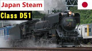 Download Class D51 (2-8-2) Steam Trains Japan (D51 498) MINAKAMI Video