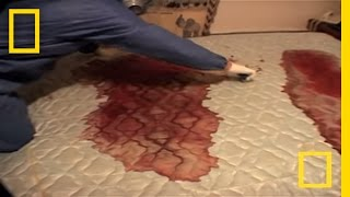 Download Crime Scene Cleaners | Real Life CSI Video