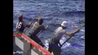 Download Tuna fishing 85 Port Lincoln 150 lbs plus fish biggest seen in my years fishing Video