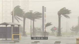 Download Typhoon Muifa Eyewall and Flooding Rain Stock Footage Screener HD 1920x1080 30p Video