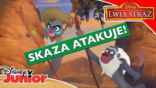 Download 🐊 Armia Skazy przybywa! | Lwia Straż | Disney Junior Polska Video