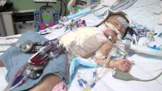 Download The Berlin Heart - Avrie's Heart Transplant Story Video