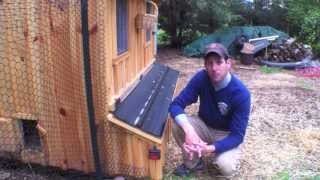 Download How to stop your chickens from eating their eggs Tips Help ideas Video