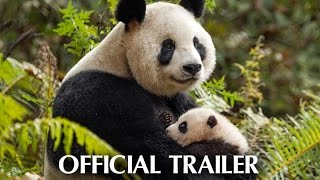 Download Disneynature's Born In China - Earth Day Trailer Video