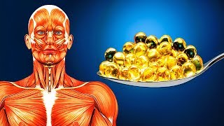 Download Take Fish Oil Every Day for 20 Days, See How Your Body Changes Video