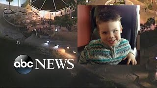 Download Boy's Body Recovered after Disney Gator Attack Video