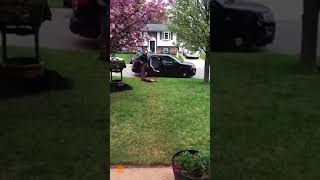Download Police Dog Refuses to Go to Work, Won't Get in the Car Video