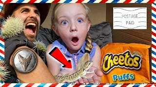 Download I Mailed Myself to the Desert With Pet Lizard *OMG* Met Coyote Peterson From Brave Wilderness (Skit) Video