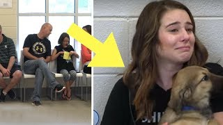 Download Families Adopted Puppies Before Even Meeting Them. Then The Heartwarming Moment Arrived Video