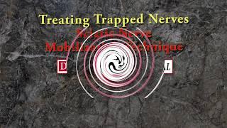 Download Sciatic Nerve Mobilization Technique with Erik Dalton Video