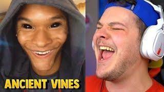 Download Funniest Ancient Vines - Reaction Video