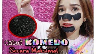 Download Cabut KOMEDO secara MAKSIMAL || Marisha Chacha Video