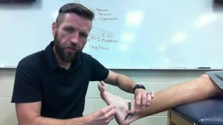 Download Ankle Evaluation Video