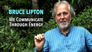 Download bruce lipton how your thought shape your current reality Video
