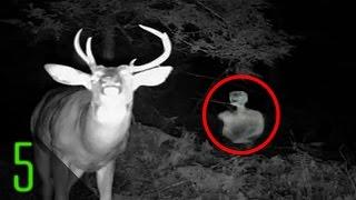 Download 5 Creepiest Unexplained Trail Cam Photos Video