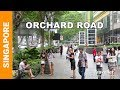 Download Singapore Attractions - Orchard Road walking tour - Singapore shopping street - Top things to do Video