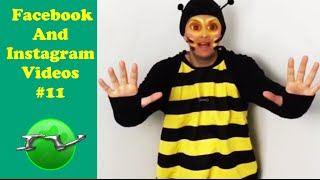 Download Try Not To Laugh With Best Facebook and Instagram Videos Compilation 2016 (Part 11) Video
