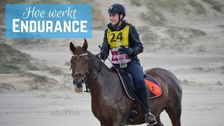 Download VLOG #51: Afgekeurd bij mijn 1e Endurance wedstrijd?! | LeanneAbigail Video