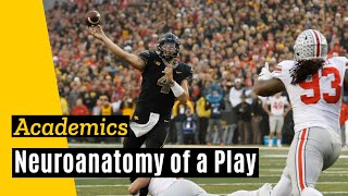 Download Anatomy of a Play: Stanley to Hockenson Video